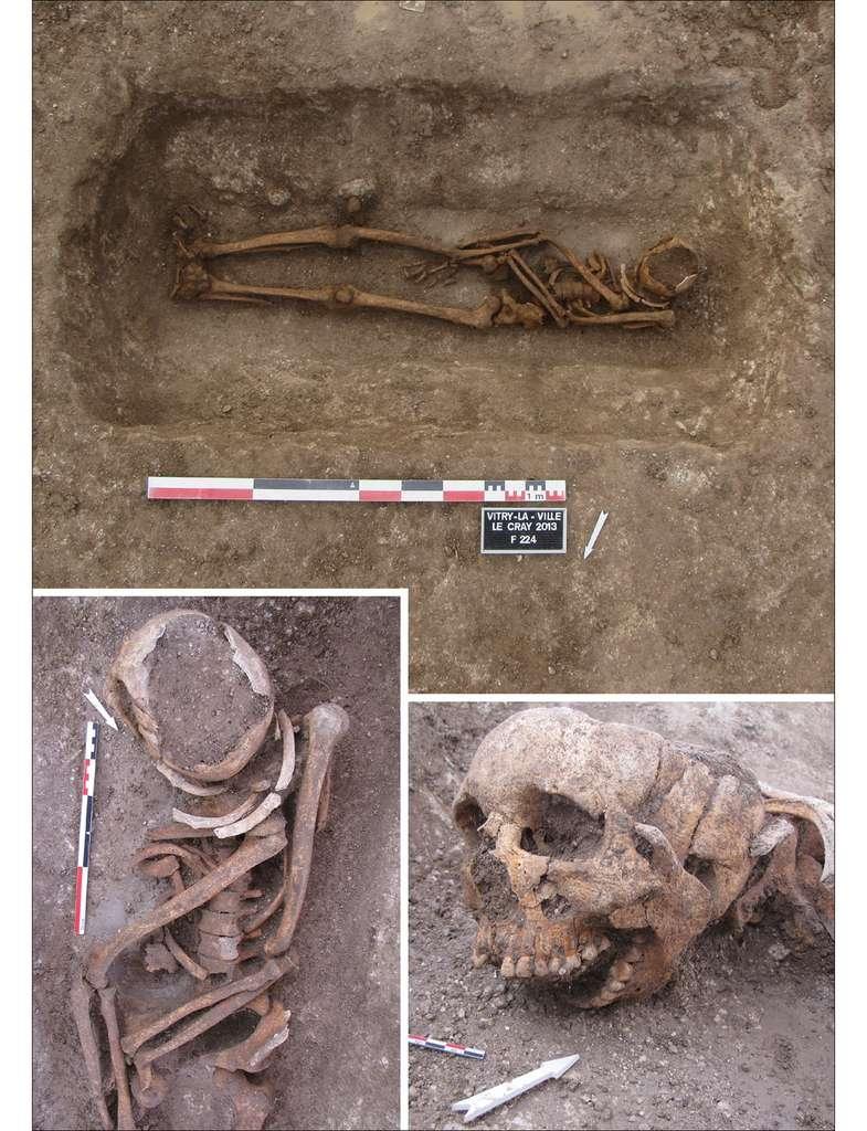 Sépulture à Vitry-la-Ville, en France, montrant un corps partiellement articulé qui a été repositionné après réouverture de la tombe. © Éveha-Études et valorisations archéologiques