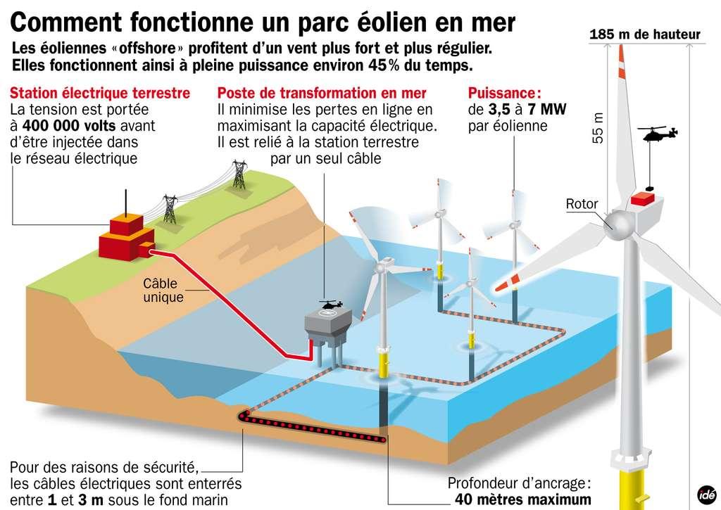 Le champ d'éoliennes est planté dans des eaux peu profondes. Le courant électrique produit est ensuite acheminé vers un poste de transformation, en mer lui aussi, avant de rejoindre la côte. © Idé