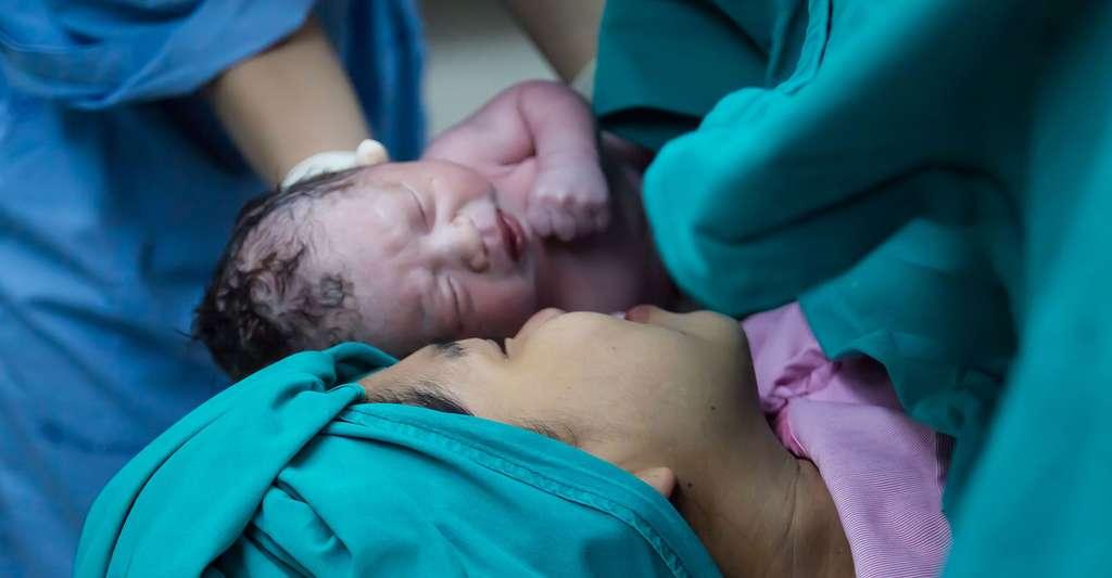 Après neuf mois de grossesse, l'accouchement a lieu. © BaddocShutter, Shutterstock