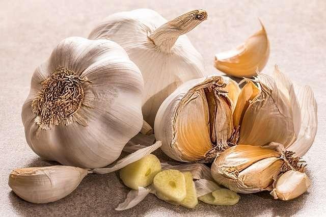 L'ail, une plante potagère à la culture très facile. © Stevepb, Pixabay, DP