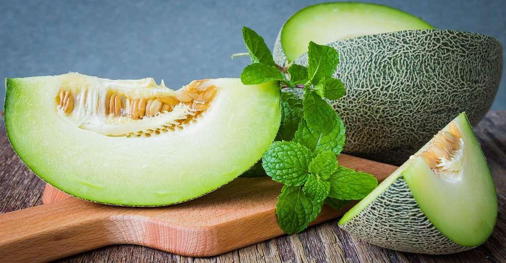 Pourquoi ne pas cultiver du melon chez soi ? Ici, un melon vert brodé. © Still AB, Shutterstock
