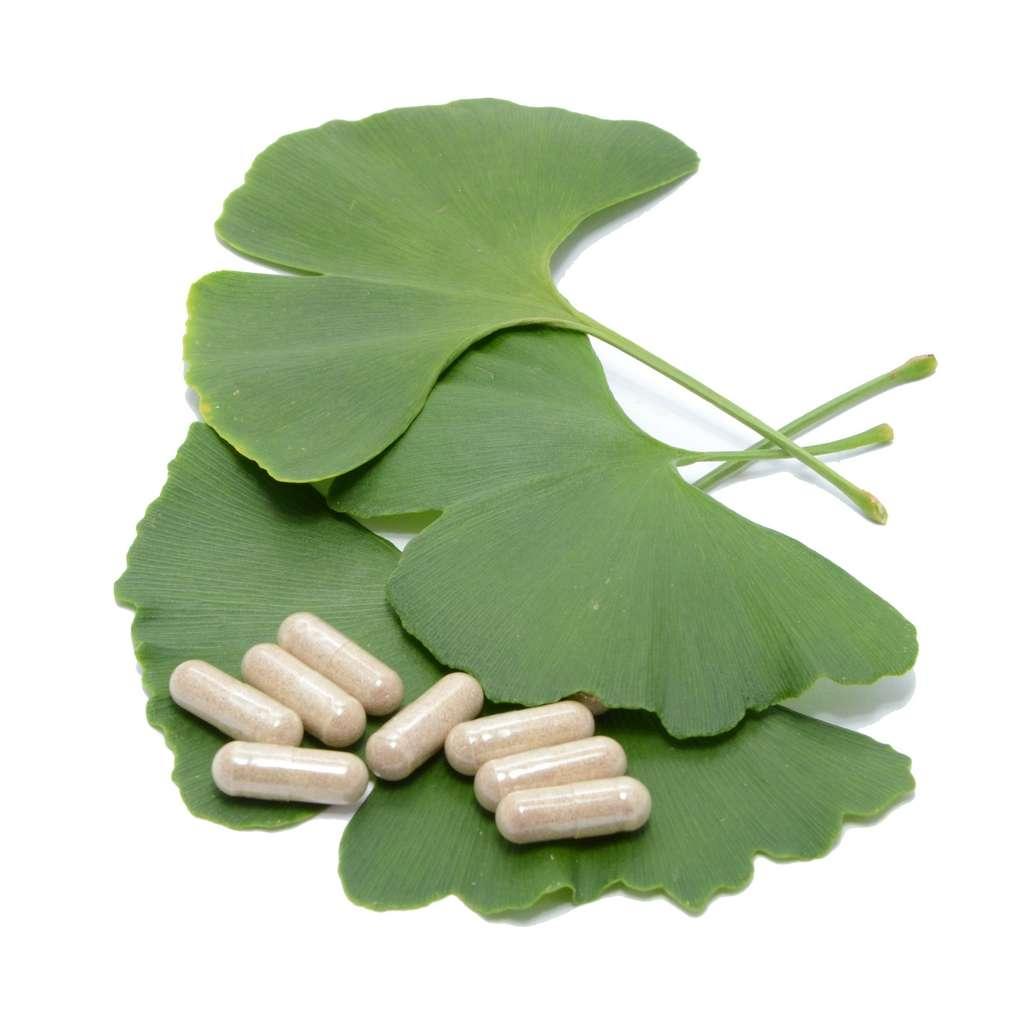 Les compléments de Ginkgo biloba proviennent de l'arbre du même nom. © igradesign, Fotolia