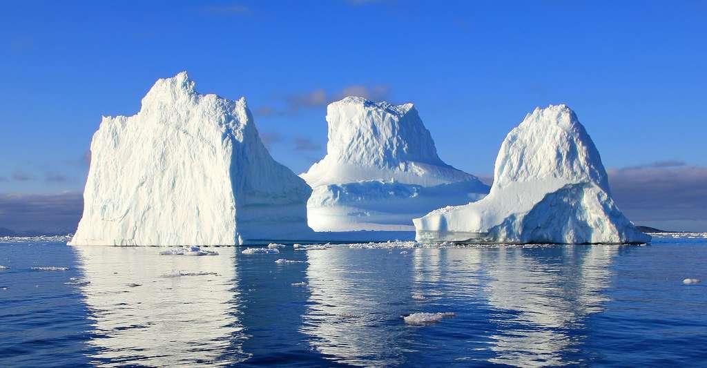 Paul-Émile Victor organisa sa première exploration polaire en 1934, sur la côte est du Groenland. Ici, des icebergs du Groenland. © Lurens, DP
