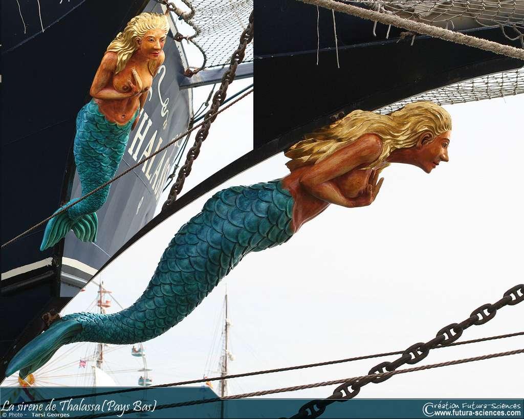 La sirène, figure de proue du Thalassa