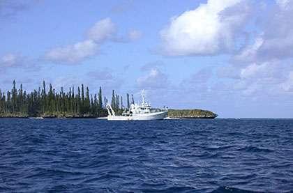 L'Alis au large de l'île des Pins, Nouvelle-Calédonie. © IRD/L. Mattio