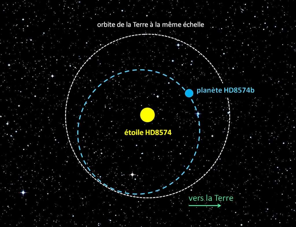 Représentation de l'orbite elliptique de la planète HD8574b autour de son étoile, avec l'orbite de la Terre donnée à la même échelle. © G. Hébrard