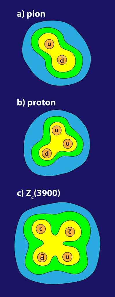 Un schéma montrant les hadrons composés de quarks, mais surtout des champs de gluons collant ces particules et expliquant l'essentiel de la masse du proton et du pion. Le méson Zc(3900) est peut-être un tétraquark avec deux quarks charmés. © Alan Stonebraker, APS