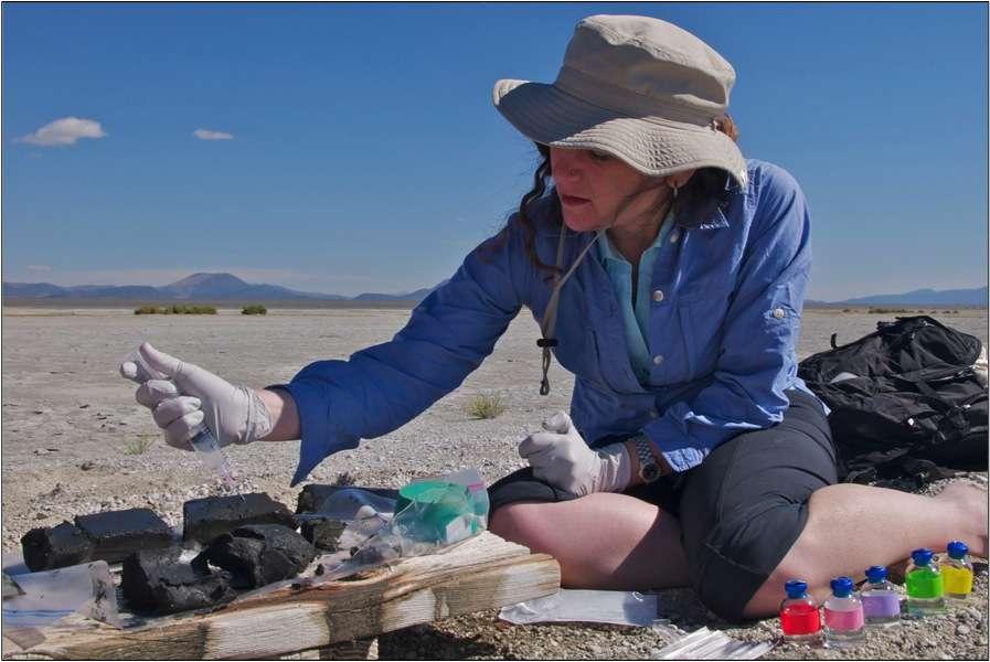 Felisa Wolfe-Simon collectant des échantillons de bactéries dans les sédiments du lac Mono. © Henry Bortman