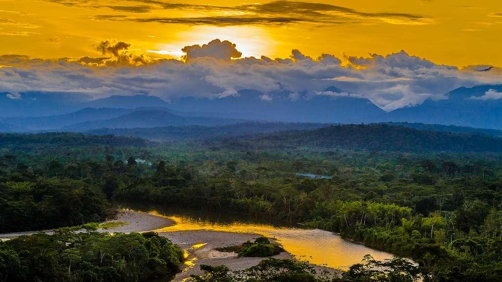 Les rivières de l'Équateur