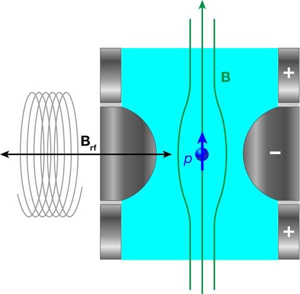 Sur ce schéma, un proton individuel noté P effectue un mouvement d'oscillation axial, c'est-à-dire de bas en haut parallèlement au champ magnétique principal B. Une petite composante oscillante du champ magnétique est perpendiculaire à ce champ et c'est elle qui va provoquer les basculements du spin du proton. © Alan Stonebraker