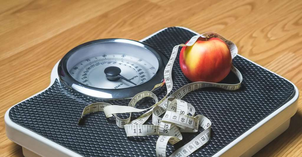 Perdre du poids. © TeroVesalainen, Pixabay, DP