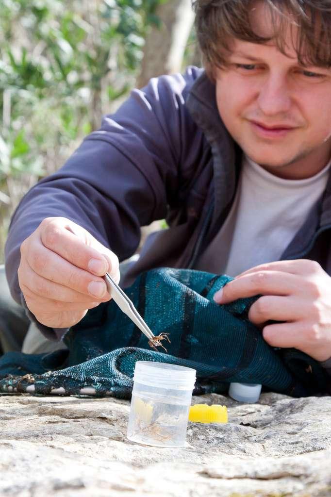 Le zoologiste se déplace sur le terrain pour étudier les animaux dans leur milieu naturel et effectuer des prélèvements. © Gabriela, Fotolia.