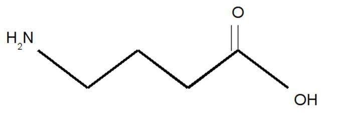 Molécule de GABA. © M.-C Jacquier
