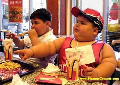 Depuis quelques années, l'obésité est devenue un problème sanitaire mondial. Des études récentes ont montré l'influence de la flore intestinale sur cette pathologie. © Tibor Végh, Wikimedia Commons, cc by sa 3.0