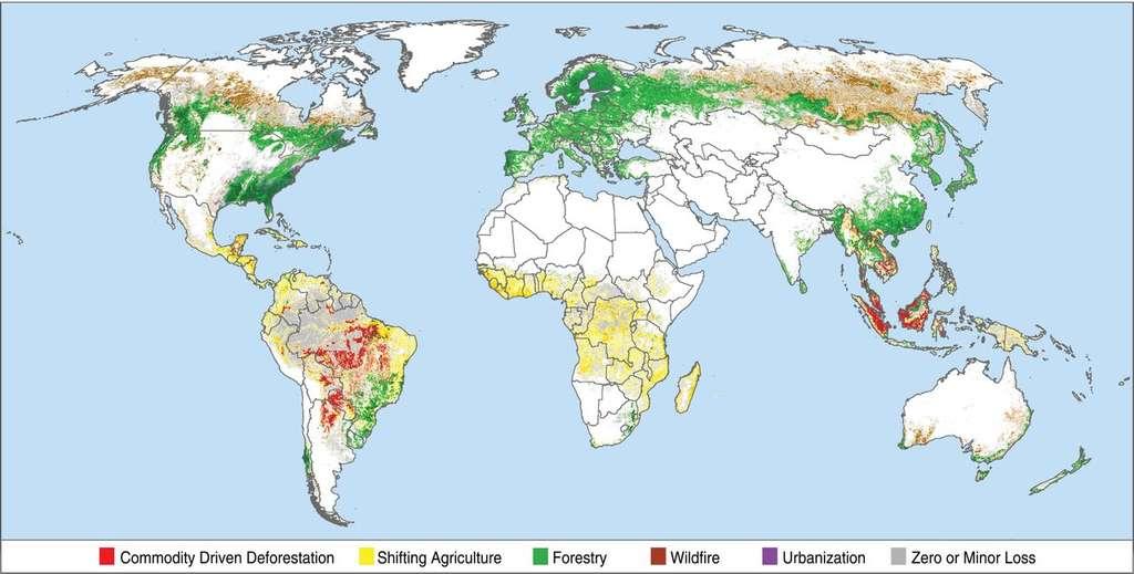L'essentiel de la déforestation « non durable » (en rouge) est constaté au Brésil et en Asie du Sud-Est. L'exploitation forestière (en vert) est prédominante en Europe et en Amérique du Nord. © Philip G. Curtis et al., Science, Sep 2018.