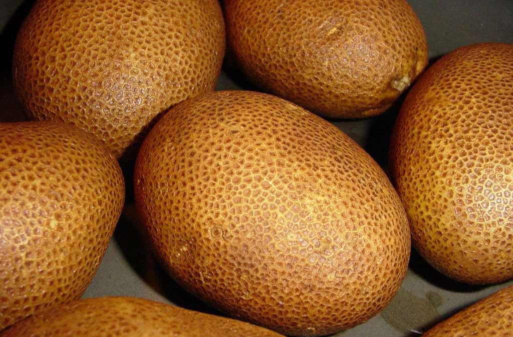 Pommes de terre Russet Burbank. © Steve Caruso, CC by-nc 2.5