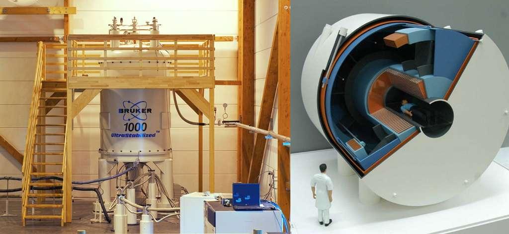 Deux très grandes infrastructures pour la résonance magnétique en France, qui sont uniques au monde. À gauche, le spectromètre RMN à 1 GHz (aimant de 23,5 T), déjà installé à Lyon, est utilisé par la communauté française et internationale. Avec un aimant de 12 tonnes et haut de 4,5 mètres pour étudier des échantillons millimétriques à l'aide de détecteurs cryogéniques, l'instrumentation est spectaculaire, mais les enjeux aussi. À droite, une maquette de l'aimant IRM Iseult qui sera installé en 2015 à Neurospin (plateau de Saclay, au sud de Paris), pour des études fonctionnelles du cerveau humain. Avec son accès libre de 90 cm, ses 4 m de diamètre et longueur, ses 1.000 ampères de courant, une cryogénie refroidie à 1,8 K, un liquéfacteur d'hélium dédié et ses 150 t, cet aimant est un exploit en instrumentation qui se porte à la hauteur de la tâche : explorer le cerveau humain [a]. © CRMN, CEA
