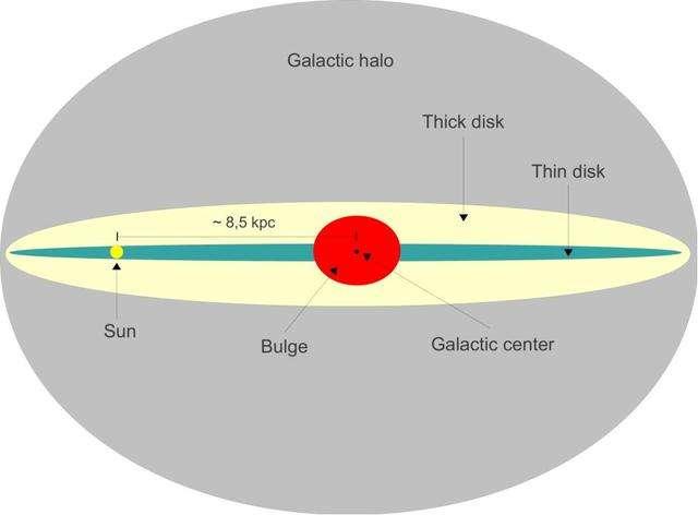 Une représentation de la Voie lactée avec son disque fin (thin disk) et son disque épais (thick disk). Le Soleil (sun) est représenté. © Gaba p, Wikimedia Commons, CC by-sa 3.0