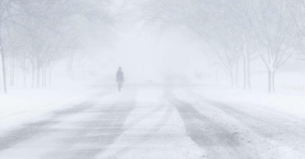 Il est dangereux de se promener dans le blizzard. © 4240513, Pixabay, CC0 Creative Commons
