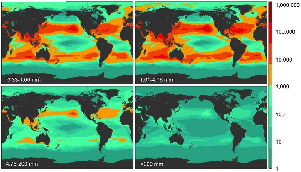 La répartition constatée des déchets de plastique, en nombre de pièces par kilomètre carré, dans les 4 catégories de tailles considérées : 0,33-1,00 mm, 1,01-4,75 mm, 4,76-200 mm et plus de 200 mm. Pour les plus petits, les deux hémisphères sont presque à égalité, une surprise pour les océanographes qui s'attendaient à une proportion plus forte dans le nord. © Marcus Eriksen et al.