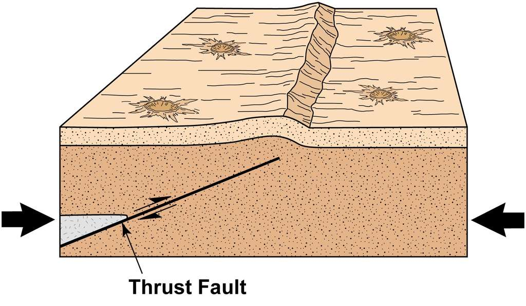 Une faille inverse (thrust fault) se produit lorsque des contraintes latérales compriment une portion de croûte. La surface se soulève et il se produit alors un escarpement de faille. Sur la Lune, ces escarpements prennent une forme lobée caractéristique d'où leur nom. Crédit : Arizona State University
