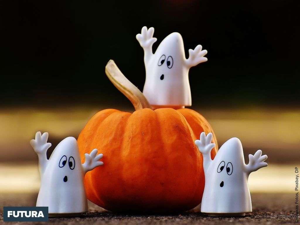 C'est Halloween, l'héritage d'une fête celtique