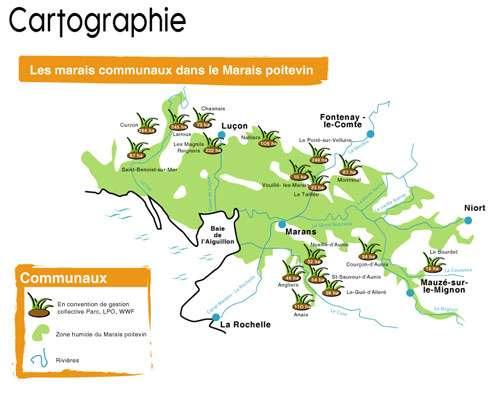 Les marais communaux du marais poitevin s'étendent de Niort à Luçon. © wwf.fr, Parc interrégional du marais poitevin - Tous droits de reproduction interdit
