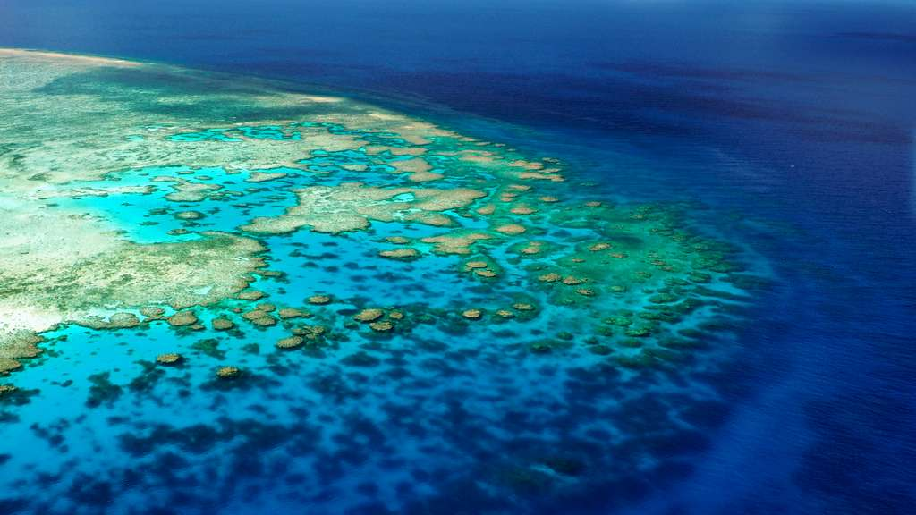 Située au large de l'Australie, la Grande Barrière de Corail est le plus grand écosystème corallien du monde. En tout, il mesure 344.400 km². À titre de comparaison, la France métropolitaine s'étale sur une superficie de 551.695 km² selon l'Institut national de l'information géographique et forestière (IGN). © Coral_Brunner, Adobe Stock