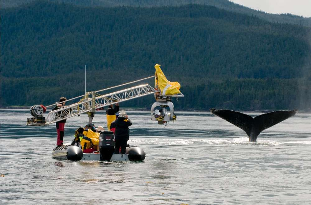 Le système stabilisateur Thetys, pour filmer en mer