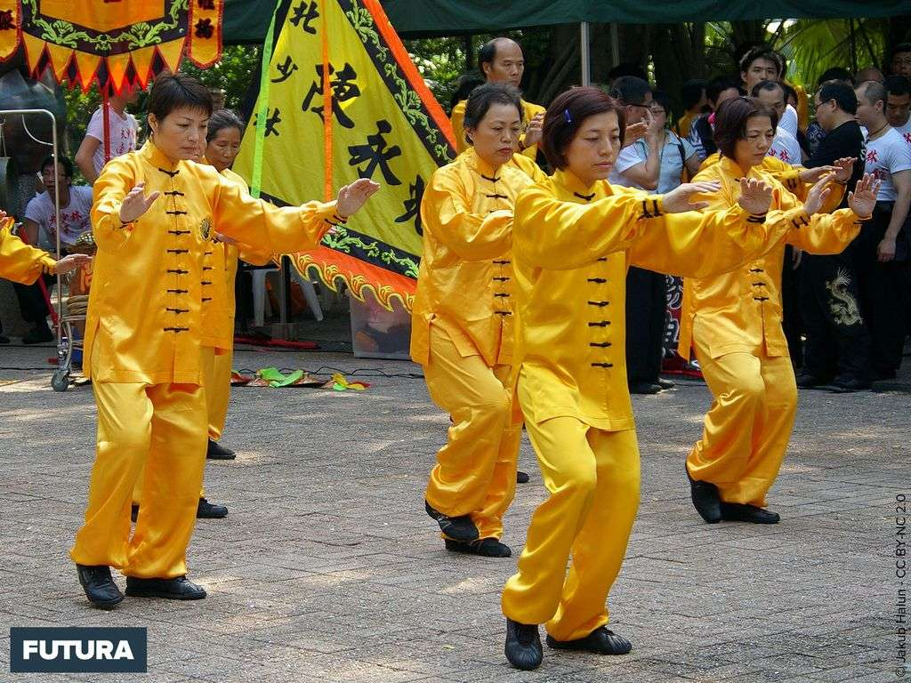 Tai Chi Chuan art martial chinois
