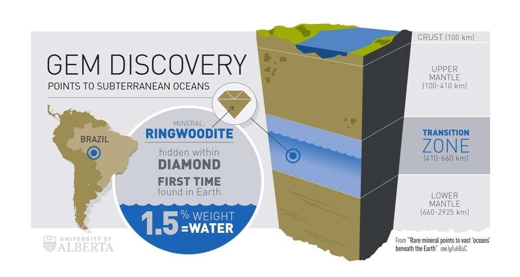 La sismologie et les expériences sur des matériaux à haute pression indiquent qu'il existe une zone de transition entre le manteau supérieur (upper mantle) et le manteau inférieur (lower mantle) à l'intérieur de la Terre. On pensait que l'olivine de la péridotite contenue dans les roches du manteau supérieur subissait un changement de phase en devenant de la ringwoodite. L'inclusion de ce minéral trouvée dans un diamant en provenance de l'État amazonien du Mato Grosso, au Brésil, prouve pour la première fois directement que cela doit bien être le cas. Capable de stocker jusqu'à 1,5 % de son poids en eau, ce minéral pourrait bien être responsable de l'existence d'un véritable océan, alimenté en eau par la subduction des plaques océaniques, au niveau de la zone de transition du manteau. © Université de l'Alberta