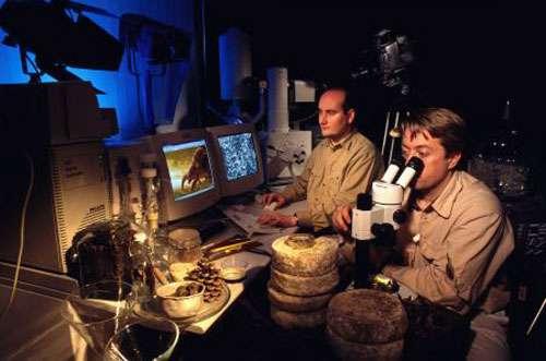 L'équipe de tournage du film Acariens cannibales : Thierry Berrod et Quincy Russell. © Pascal Goetgheluck, reproduction et utilisation interdites