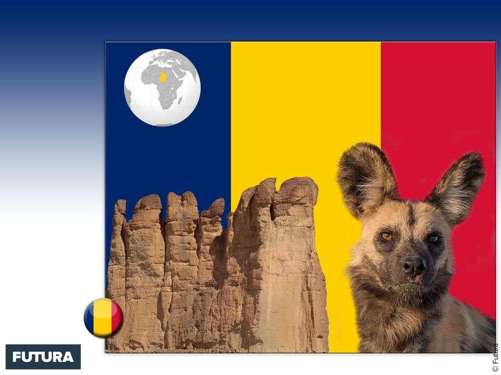 Drapeau : Tchad