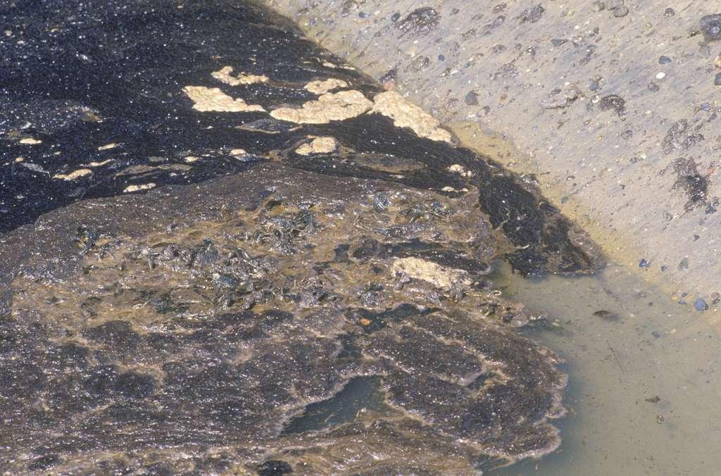 Le pétrole se répand sur le rivage de la ville d'Huntington Beach, en Californie. © Spirit of America