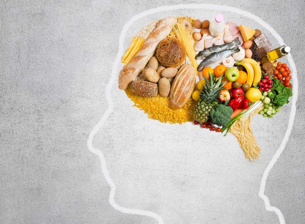 Cette étude montre qu'il existe des mécanismes cérébraux qui s'activent lorsque nous nous exposons à un certain type d'aliments. © Tijana, Fotolia
