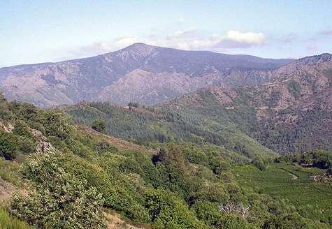 Mont Aigoual (Massif Central, France) © Robin Lacassin, 2006 Licence Creative Commons Paternité – Partage des conditions initiales à l'identique 2.5 générique