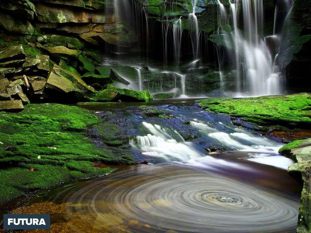 Les chutes d'Elakala en Virginie, États-Unis