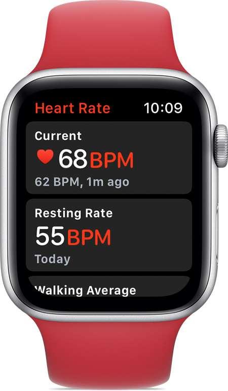 Une montre connectée affiche la fréquence cardiaque instantanée, mais aussi la moyenne de la journée et la fréquence au repos © Apple