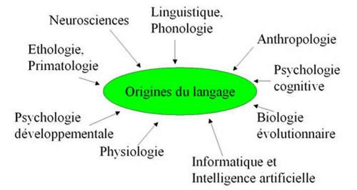 La question des origines du langage est intrinsèquement pluridisciplinaire. © DR