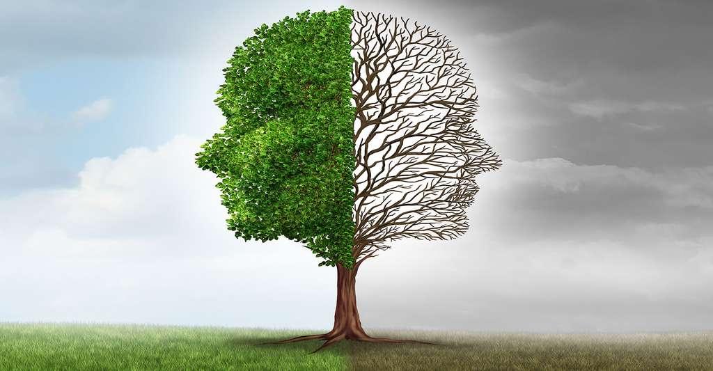 La psychologie positive préconise de gérer ses émotions et de donner un sens à sa vie. © Lightspring, Shutterstock