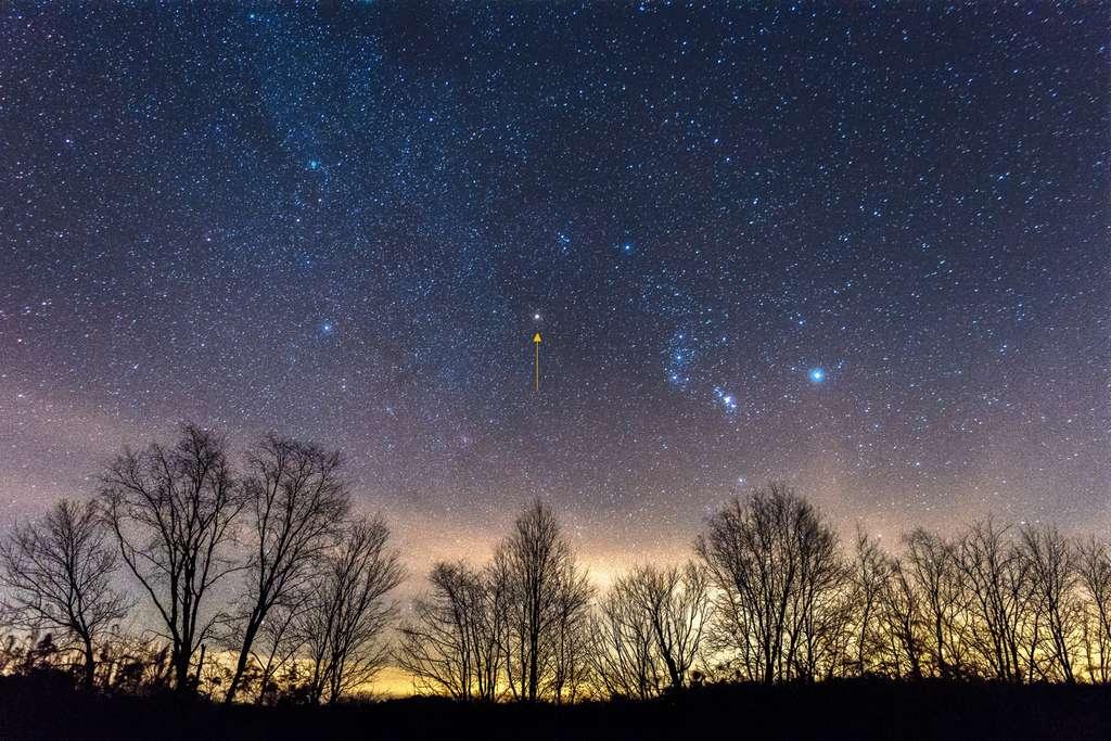 La flèche jaune pointe l'étoile Bételgeuse dans la constellation d'Orion. © Justin, Adobe Stock