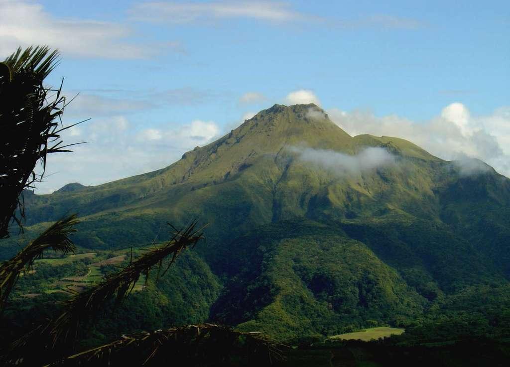 La montagne Pelée, en Martinique, siège d'une nuée ardente, qui fit 28.000 victimes le 8 mai 1902, a donné son nom au type péléen. © J.-M. Bardintzeff, tous droits réservés, reproduction interdite
