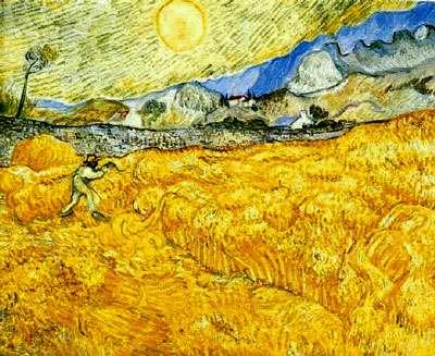 Champs de blé © Van Gogh