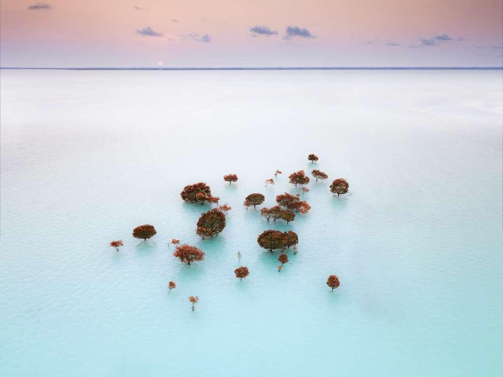 Pays : Tanzanie - Photographe : Reza Bagheri. © Drone Photo Awards 2021