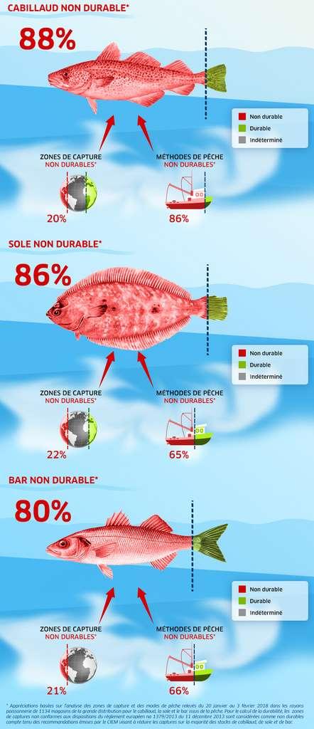 planète poissons site de rencontre rencontres en ligne Vragen stellen