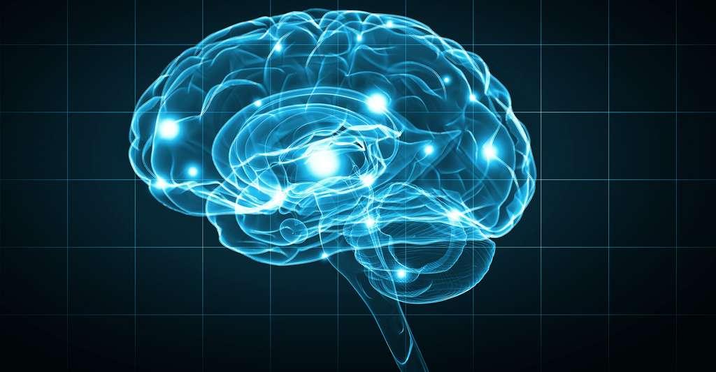 Notre cerveau passe son temps à produire des jugements sur son environnement. © Sergey Nivens, Shutterstock
