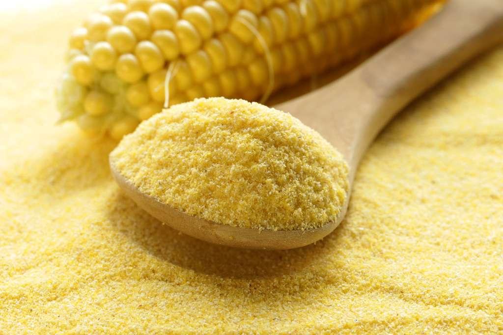 La semoule de maïs peut remplacer celle de blé dans les pâtes sans gluten. © dream79, Fotolia