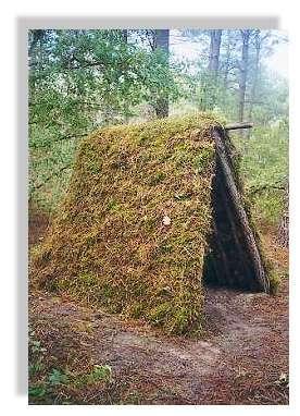 L'habitat des résiniers - L'abri est terminé : un vrai travail d'orfèvre ! © Claude Courau - Collection privée - Tous droits réservés