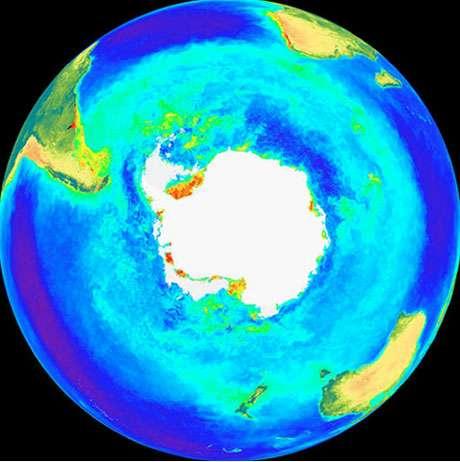 Fig. : 11 - Les teneurs en chlorophylle dans l'océan antarctique mesurées depuis l'espace. Les teneurs les plus élevées sont en vert.