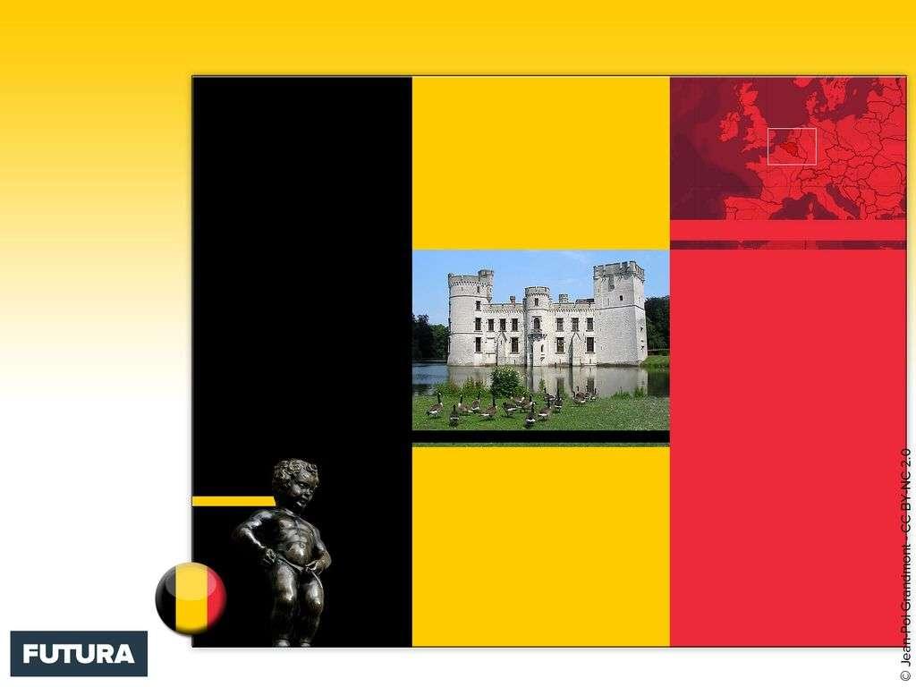Drapeau : Belgique
